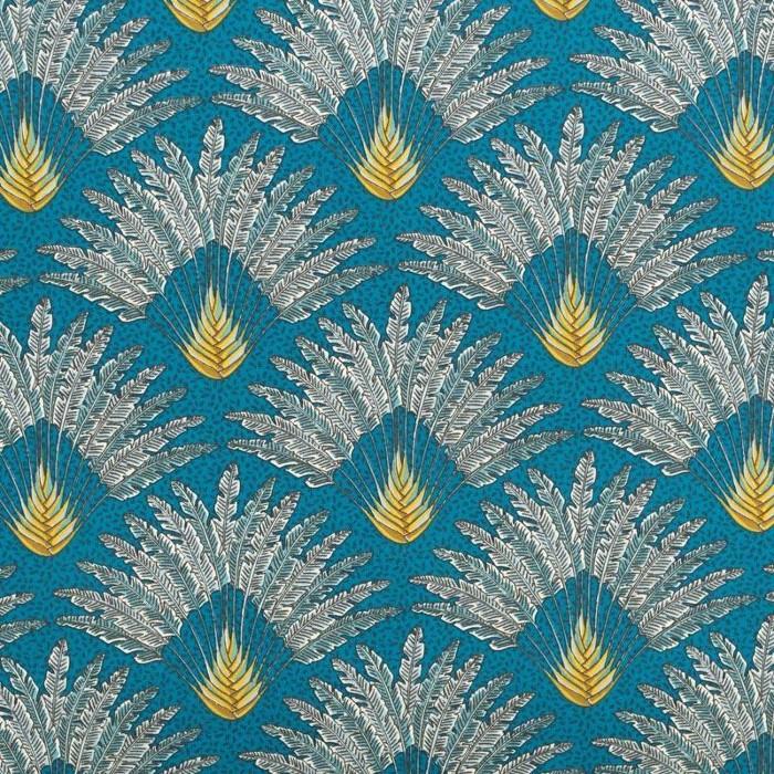 coton palmier madagascar
