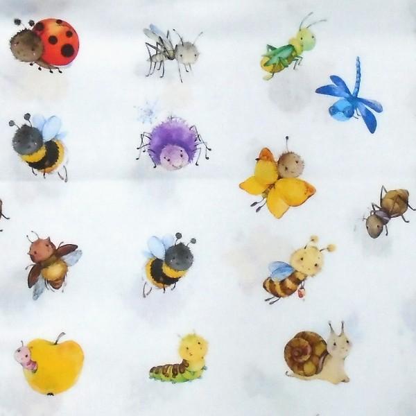 coton bébé insecte