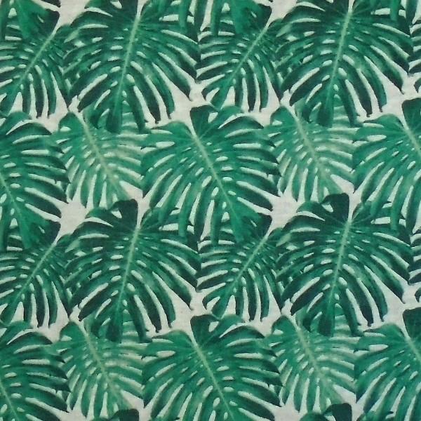 coton feuille verte