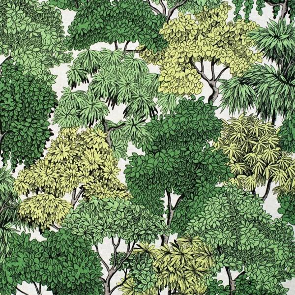 coton forêt
