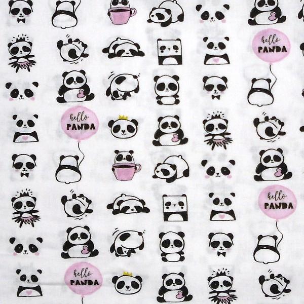 coton panda hello