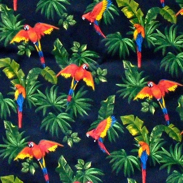 coton perroquet
